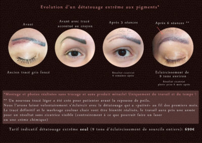 detatouage-extreme-pigments-audreyrojo