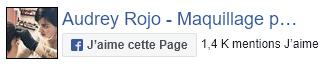 Page Facebook Audrey Rojo